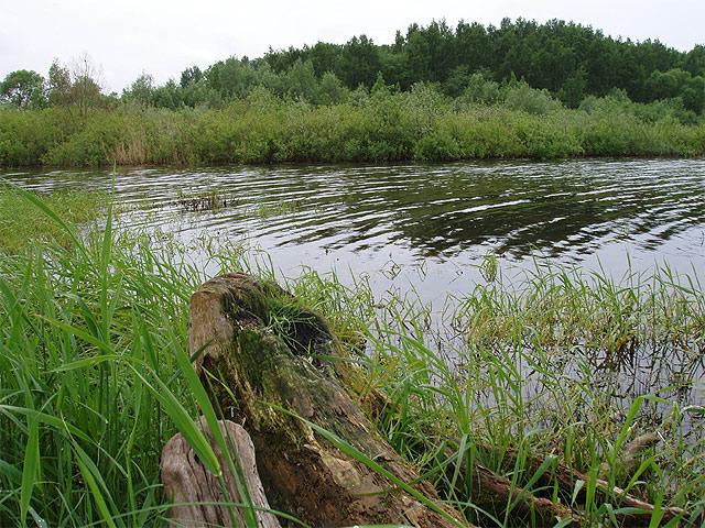 utinay_zavod